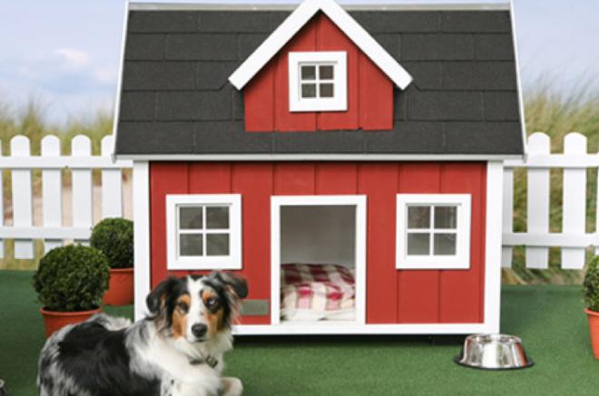 farm dog house shed