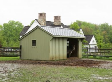 buy a run in shed new jersey