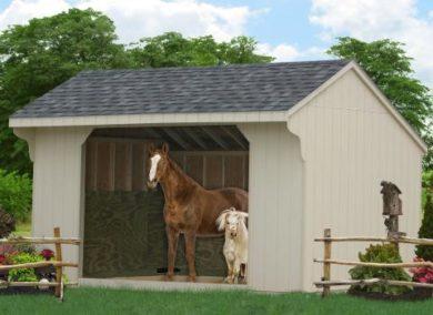 10x16 run in sheds 1
