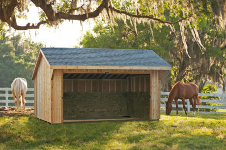 cedar wood horse run in shed