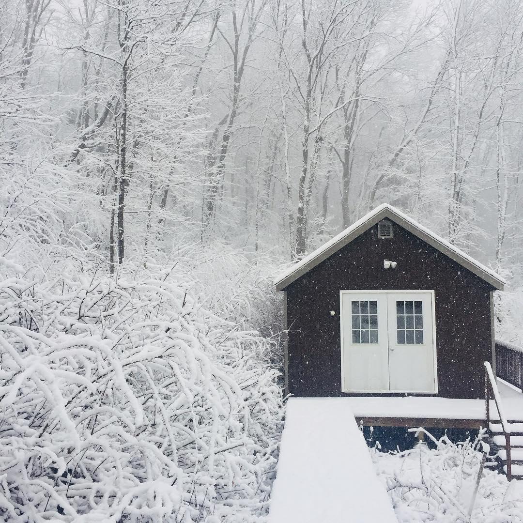 leeahjoo winter time art shed