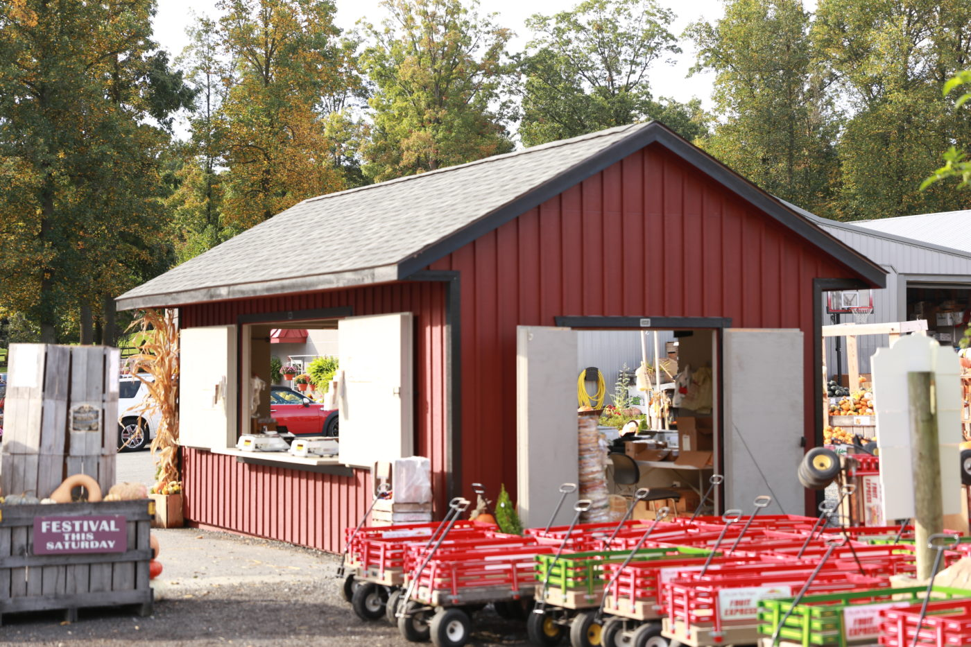 beautiful custom built shed