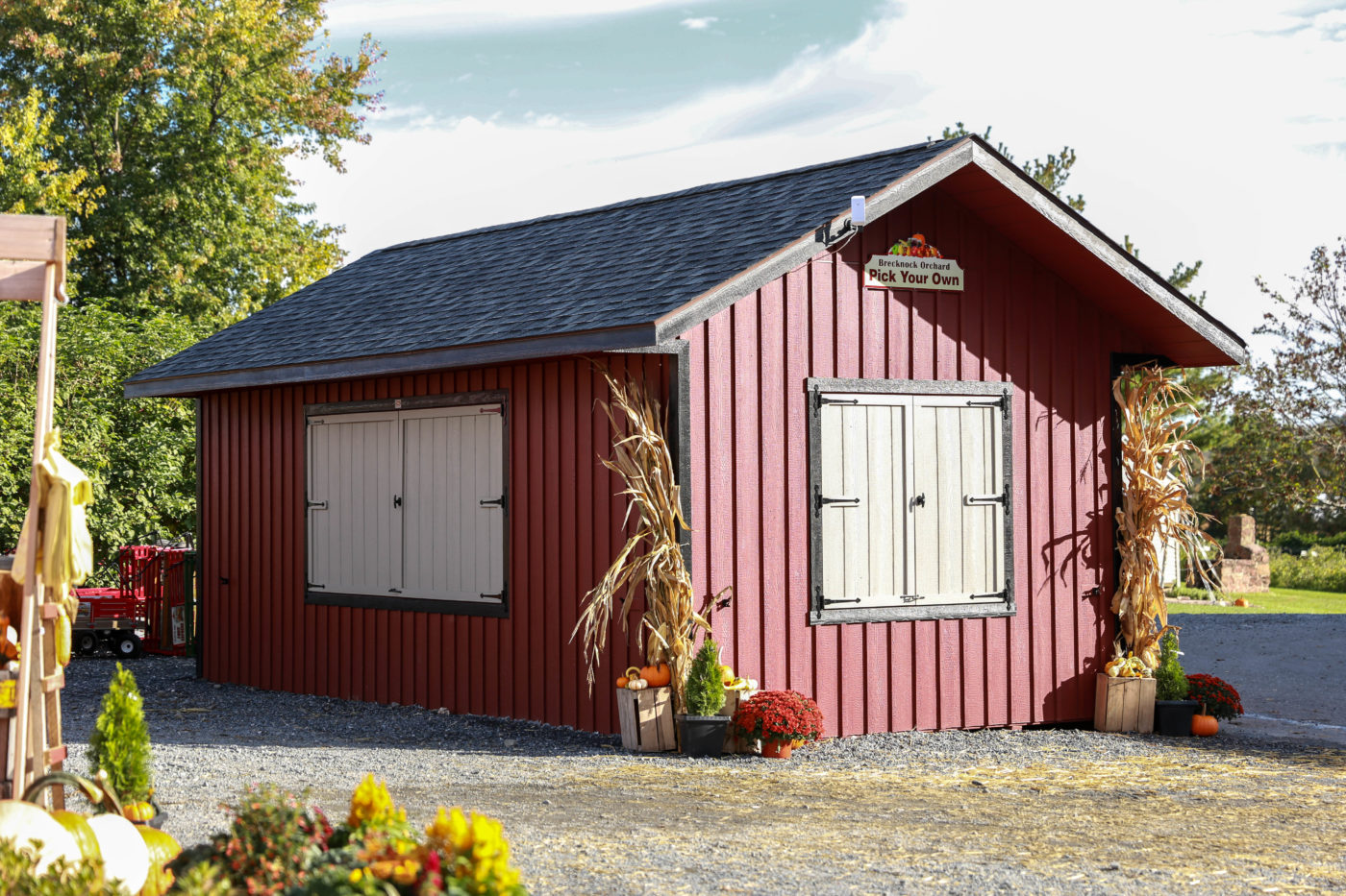 custom built sheds for more space