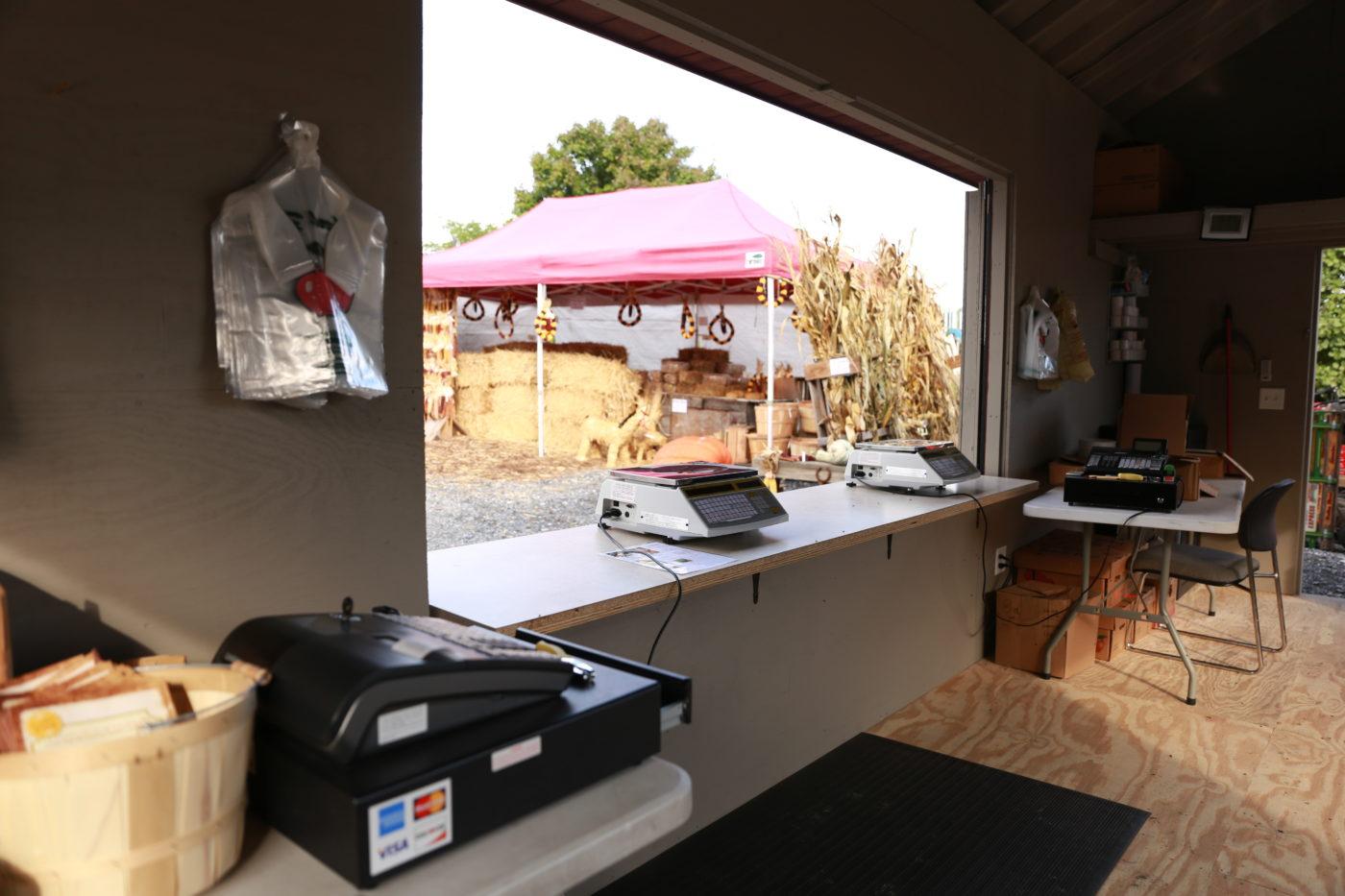 large window for custom built sheds